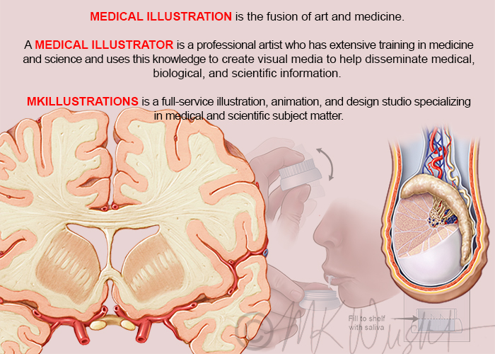 What is a Medical Illustrator?